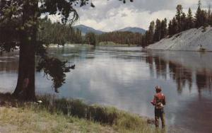 Fishing on the Yellowstone River WY, Wyoming