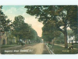 Divided-Back VIEW OF STREET Cortland New York NY n1608