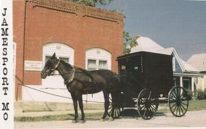 Jamesport Mo American Amish Transport Horse & Cart Postcard