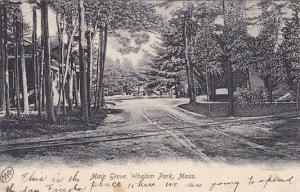 Scenic view, Main Groove, Whalom Park,  Massachusetts, PU-1906