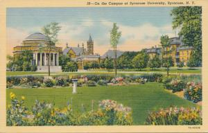 Main Campus at Syracuse University - Syracuse NY, New York - Linen