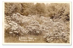 RPPC Laurel Time in Pennsylvania