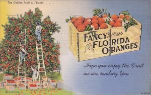 The Golden Fruit Of Florida Fancy Florida Oranges Miami Florida 1940