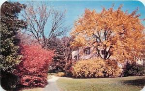 Lisle Illinois~The Morton Arboretum~Path to Thornhill Building~1950s Postcard