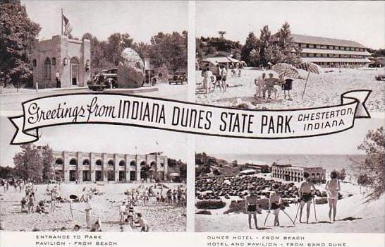 Indiana Chesterton Greeting From Indiana Dunes State Park