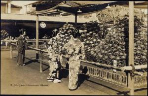 japan, GEISHA Ladies Kimono Ghrysanthemum Show 30s RPPC