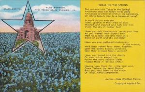 Texas State Capitol & State Flower Texas In The Spring By Mae Worthen Par...