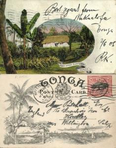 tonga islands, Pineapple Plantation (1906) Pre-Printed Stamp