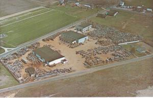 HURFFVILLE , New Jersey , 50-60s ; C. Harvis Sons Inc., Used Pallet Dealers