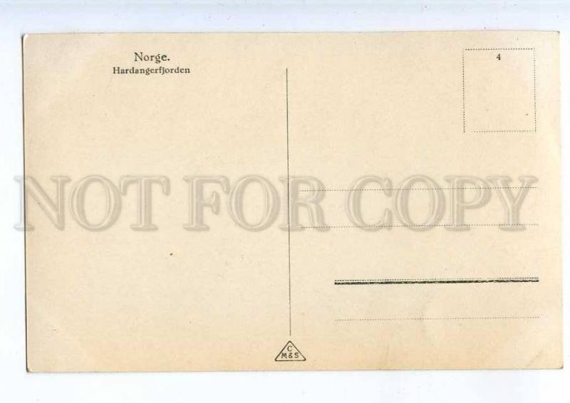 241125 NORWAY Hardangerfjorden Vintage photo postcard