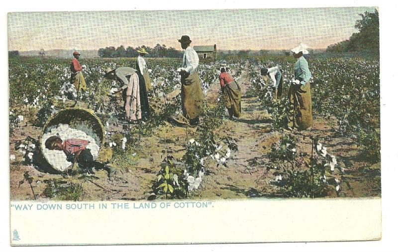 Way Down South in the Land of Cotton, 1908, Tuck & Sons