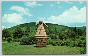 Horse Shoe Run WV~Roadside 219~Wood Shingle Windmill in Middle of Nowhere~1960