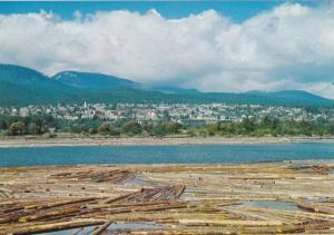 Log Pond,  Ladysmith, Vancouver Island,  B.C.,  Canada,  50-70s