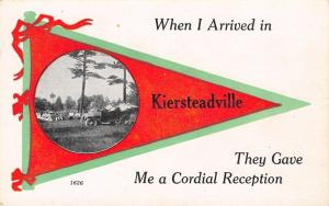 Kiersteadville NB When I Arrived, I Got A Cordial Reception~Picnic & Auto c1915