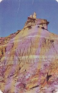 Arizona Petrified Forest The Interesting Formation Is Found In The Petrified ...