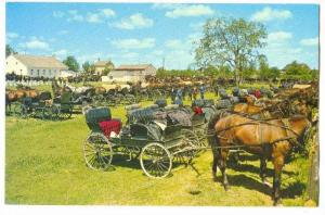 Horses and buggies lined up behind Martin's old order Mennonite Meeting House...
