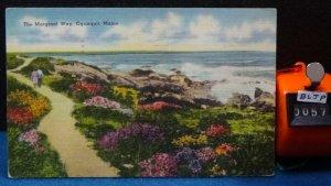 STD Vintage The Marginal Way Ogunquit Maine Posted 1952 Linen