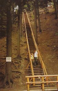 Canada Nova Scotia Truro Jacob's Ladder Victoria Park