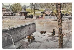 Switzerland Bern Barengraben Fosse aux Ours Bear Pit Park