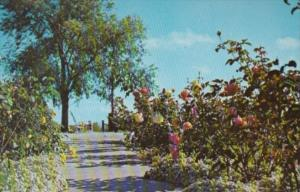 Indiana Valparaiso Rose Garden Strongbow Turkey Farm & Inn