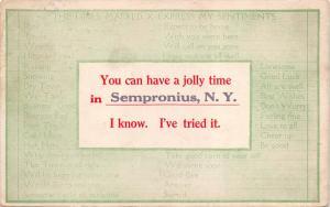 SEMPRONIUS-CAYUGA COUNTY NEW YORK~YOU CAN HAVE A JOLLY TIME... POSTCARD 1911 PMK