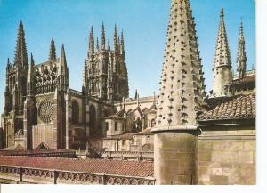 Postal 043390 : Burgos. Catedral detalle