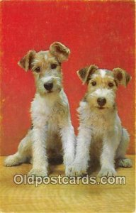 Wire Fox Terrier Dog Unused