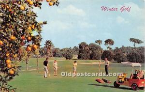 Old Vintage Golf Postcard Post Card Winter Golf Unused