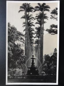 Brazil: Rio De Janeiro - Avenide de Palmeiras c1927 RP - Old Postcard