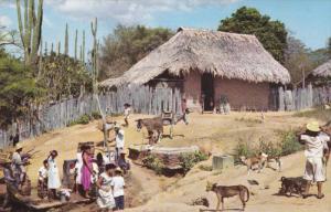 Ranchito de campo, Donkey, VENEZUELA, PU-1964