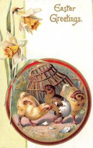 Easter~Chicks Hatch~Egg Shell on Bottom~Basket~Daffodils~Gold Oval Emboss~1908