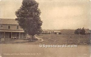 Columbia and Cottages White Sulphur Springs NY 1915