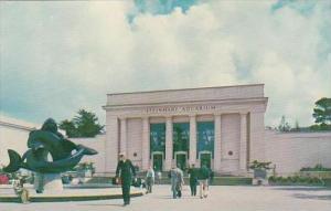California San Francisco Steinhart Aquarium