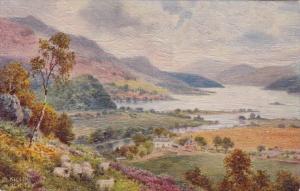 Tucks Loch Tay Killin Bonnie Scotland