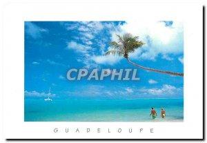 Modern Postcard Guadaloupe Antilles