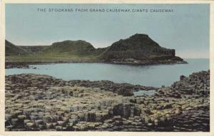 Stookans from Giant's Causeway - County Antrim, Northern Ireland