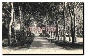 Old Postcard Chenonceaux Chateau Grand Allee