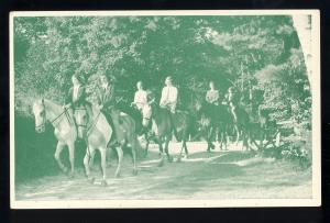 Fitzwilliam, New Hampshire/NH Postcard, Fleur de Lis Camp, Horseback Riding