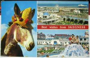 England Best wishes from Skegness - posted 1980
