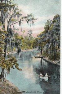 Suwanee River , Florida , 1900-10s