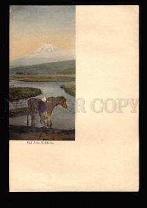 026394 JAPAN Fuji from Ukishima Vintage postpaper