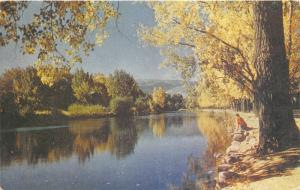 Reno Nevada~Truckee River in Fall~Man Leans over Rocks over River~1950s Postcard