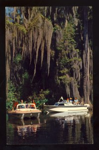 Florida/FL Postcard, Spanish Moss, Boating Along Florida's Rivers & Canals