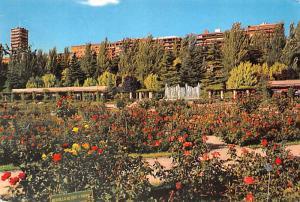 Madrid - The Roselade