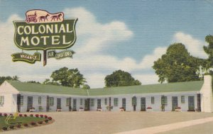 Kentucky Paris Colonial Motel 1958Curteich sk1340