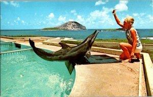 Sea Life Park Hawaii KEIKI The Porpoise Vintage Postcard Standard View Card