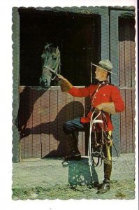 Royal Canadian Mounted Police Officer with Horse in Stall, Canada RCMP