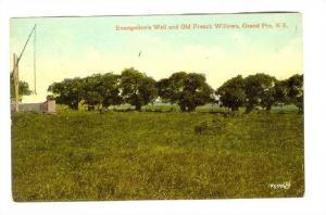 Well & French willow, Grand Pre , Nova Scotia, Canada, 00-10s
