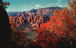 Oak Creek Canyon, AZ, View from Schnebly Hill, Chrome Vintage Postcard g5731