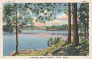 Maine Greetings From Norway Lake 1939 Curteich